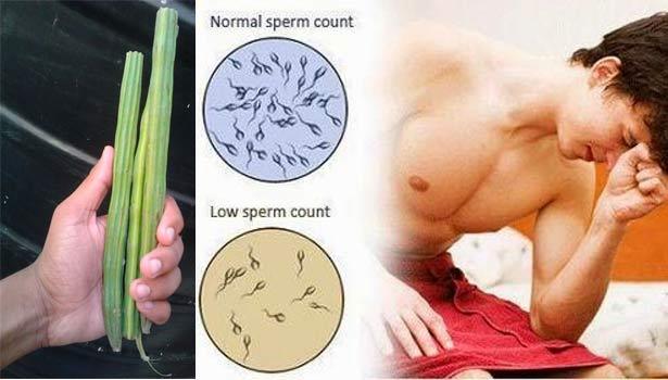 ஆண்மையை அதிகரிக்க, உயிரணுக்கள் வலிமை பெற உதவும் முருங்கை